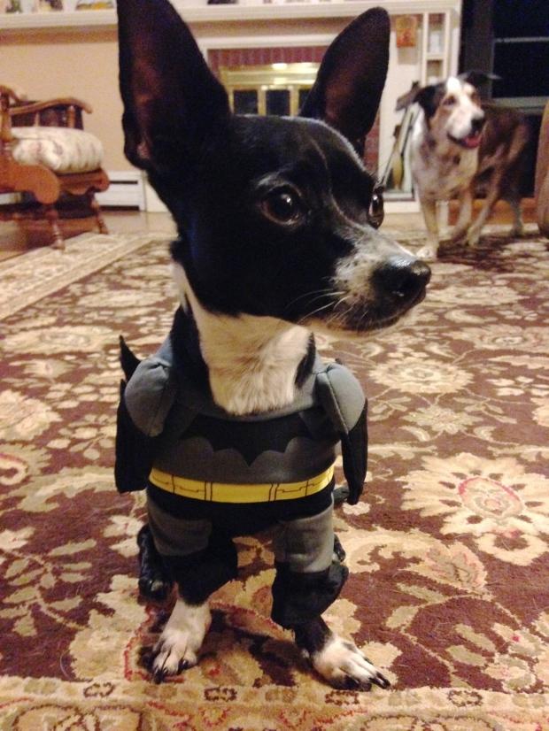 Bat-Hans_orig